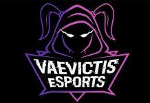 vaevictis-esports-logo