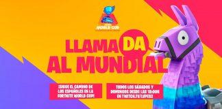 Llamada al Mundial Fortnite World Cup