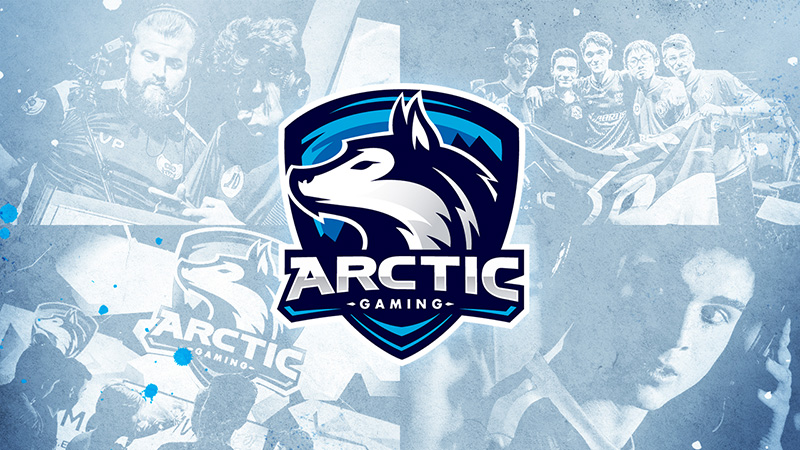 Arctic Gaming en Gamergy
