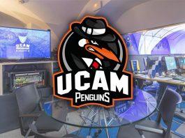 UCAM Penguins ofrece 5 becas universitarias